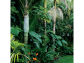 landscape-solutions-auckland-small-3