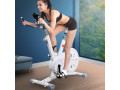 spin-bike-magnetic-fitness-exercise-bike-flywheel-commercial-home-gym-workout-small-5