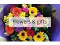 flowers-in-whitby-small-0