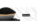 sesam-seeds-suppliers-in-auckland-small-0
