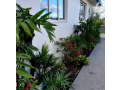 landscape-solutions-auckland-small-8
